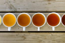 Травяной чай своими руками рецепты